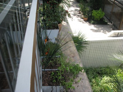 horta na varanda - casa de Valentina